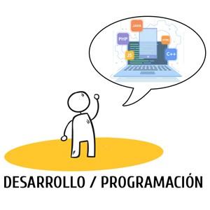 La parte encargada de la programación tiene que decidir con qué lenguaje de programación tiene pensado trabajar